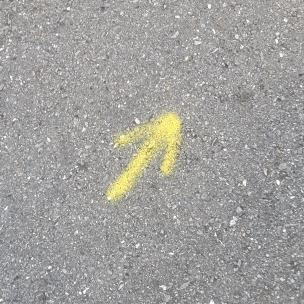 This arrow caused much jubilation!